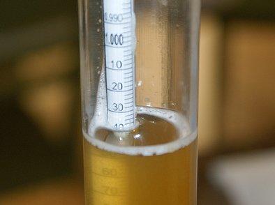 image from fermentarium.com